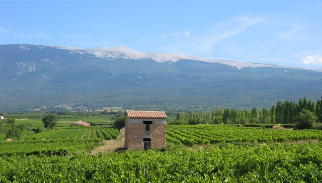 photo du Mont Ventoux